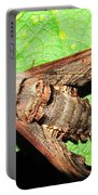 Abbotts Sphinx Moth Portable Battery Charger