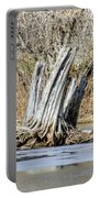 Aboriginal Stumps Portable Battery Charger
