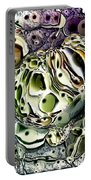 Abstract 63016.3 Portable Battery Charger