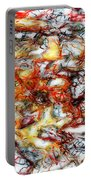 Abstract 9591 Portable Battery Charger