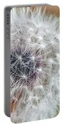 Abstract Dandy Lion On - Orange Portable Battery Charger