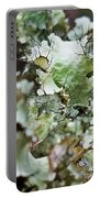 Abstract Flora 1 Portable Battery Charger