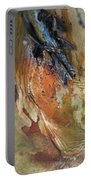 Abstract I Portable Battery Charger