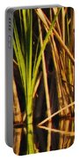 Abstract Reeds Triptych Top Portable Battery Charger