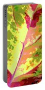 Abstract Summer's End Portable Battery Charger