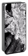 Abstraction Of Nature No. 4 Portable Battery Charger