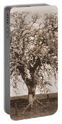 Acacia Tree In Sepia Portable Battery Charger