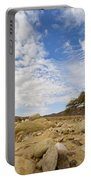 Acacia Tree In The Desert Portable Battery Charger