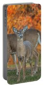 Acadia Deer Portable Battery Charger