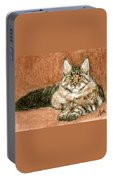 Aceo Maine Coon Cat Portable Battery Charger