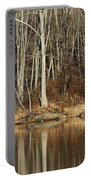 Across Skymount Pond - Autumn Browns Portable Battery Charger