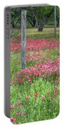 Adding A Splash Of Color-indian Paintbrush In Texas Portable Battery Charger