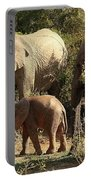 Addo Elephant Family Portable Battery Charger