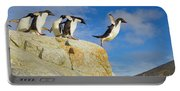 Adelie Penguins Jumping Portable Battery Charger