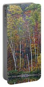 Adirondack Birch Foliage Portable Battery Charger