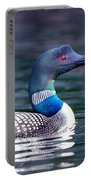 Adirondack Loon 3 Portable Battery Charger