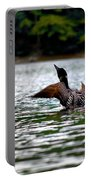 Adirondack Loon 4 Portable Battery Charger