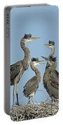 Adolescent Great Blue Herons Portable Battery Charger