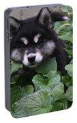 Adorable Alusky Puppy Hiding In A Garden Portable Battery Charger