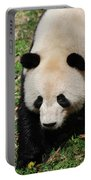Adorable Face Of A Black And White Giant Panda Bear Portable Battery Charger
