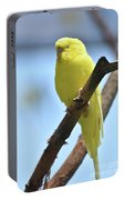 Adorable Face Of A Yellow Budgie Parakeet Portable Battery Charger