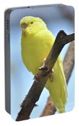 Adorable Little Yellow Budgie In The Wild Portable Battery Charger