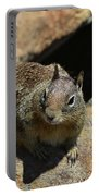 Adorable Up Close Look Into The Face Of A Squirrel Portable Battery Charger