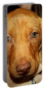 Adorable Vizsla Puppy Portable Battery Charger