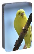 Adorable Yellow Budgie Parakeet Bird Close Up Portable Battery Charger