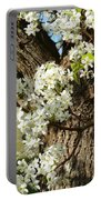 Adorned With Beauty Portable Battery Charger