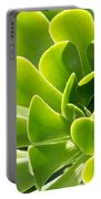 Aeonium Canariense Portable Battery Charger