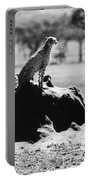 Africa: Cheetah Portable Battery Charger