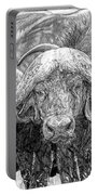 African Cape Buffalo Portable Battery Charger