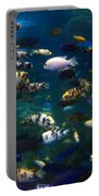 African Cichlids 2 Portable Battery Charger
