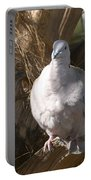 African Collared Dove 3 Portable Battery Charger
