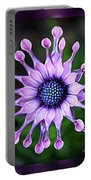 African Daisy - Hdr Portable Battery Charger