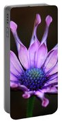 African Daisy Portrait Portable Battery Charger