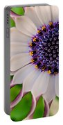 African Daisy Portable Battery Charger
