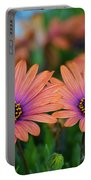African Daisy Twins Portable Battery Charger
