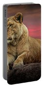 African Female Lion In The Grass At Sunset Portable Battery Charger