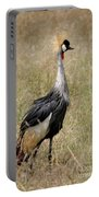 African Grey Crowned Crane Portable Battery Charger