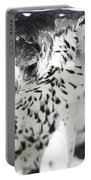 African Hawk Eagle 2 Portable Battery Charger