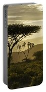 African Interlude Portable Battery Charger