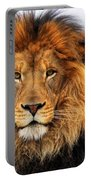 African Lion 1 Portable Battery Charger