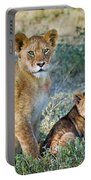 African Lion Panthera Leo Family Portable Battery Charger