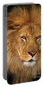 African Lion Panthera Leo Wildlife Rescue Portable Battery Charger