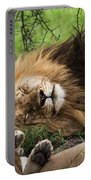 African Lion Sleeping In Serengeti Portable Battery Charger