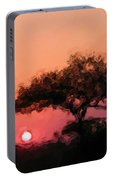 African Sunset Portable Battery Charger