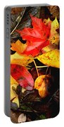 After The Rains Of Autumn Portable Battery Charger