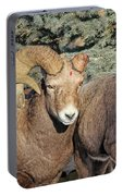 After The Rut Bighorn Sheep Portable Battery Charger
